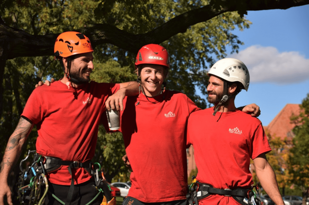 Three Royal Tree Service arborists